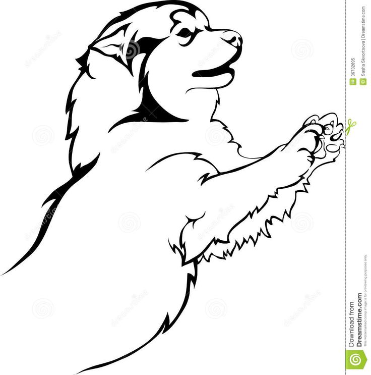 16 best RACHEL images on Pinterest Coloring sheets, Husky and - new snow dogs coloring pages