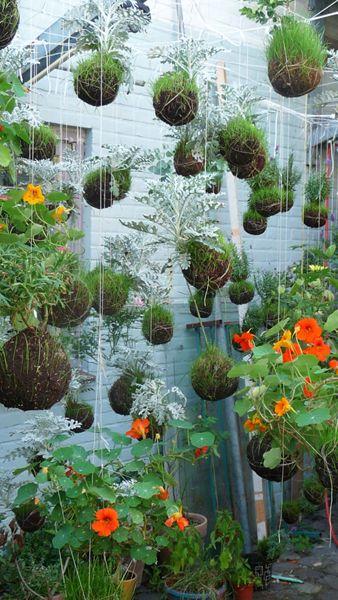 Artist and Gardener: Fedor van der Valk, String Gardens