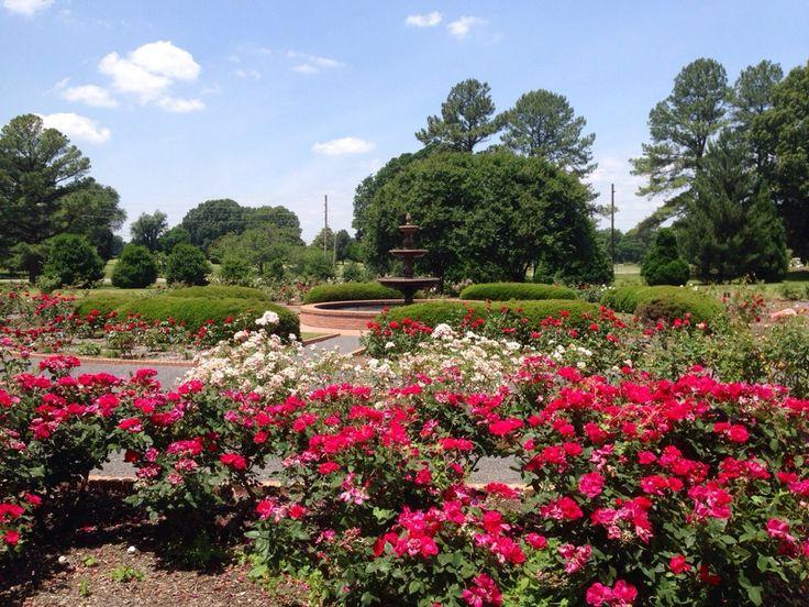 14 best Memphis Botanic Garden Rose Garden Memphis Venue