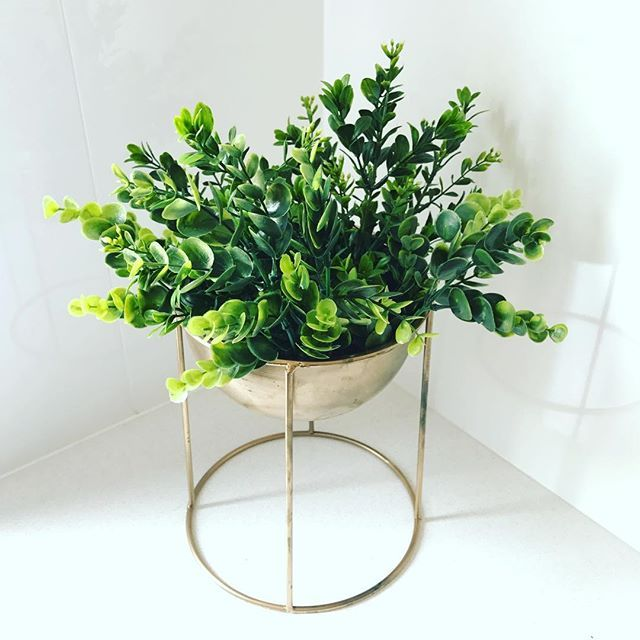 Check out our $10 range of Centrepieces for Hire