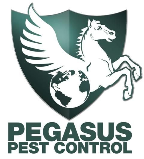 1b Pegasus -Logo.jpg provided by Pegasus Pest Control West Sacramento 95691