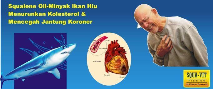 minyak ikan hiu obat jantung koroner miniminyak ikan hiu obat jantung koroner miniminyak ikan hiu obat jantung koroner mini