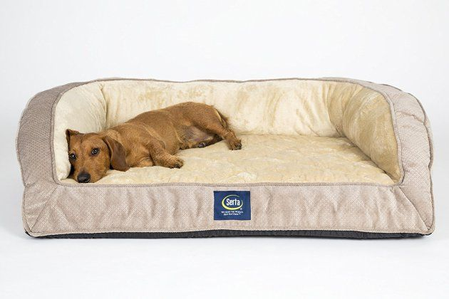 Serta Orthopedic Quilted Couch | Orthopedic Dog Bed | Orthopedic Dog Bed Reviews