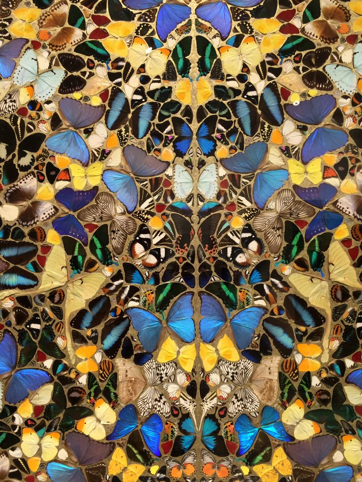 Damien Hirst - Butterflies