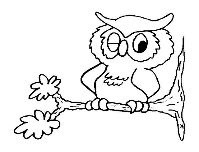 owl diaries coloring pages - photo#18