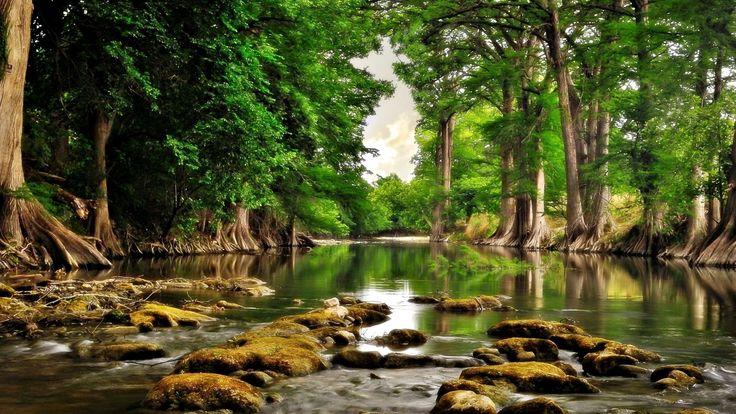 Nature Widescreen Wallpaper 1080p