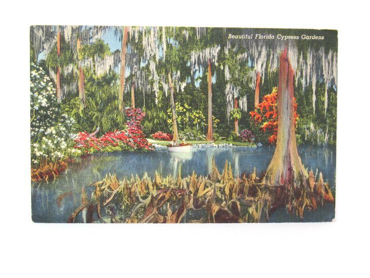 Florida Postcard Cypress Gardens Antique Post Cards Travel Ephemera by FindingMaineVintage on Etsy