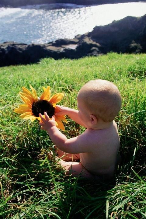 13 lovely flower names for baby.  -> http://www.babyzone.com/baby-names/flower-names_224964