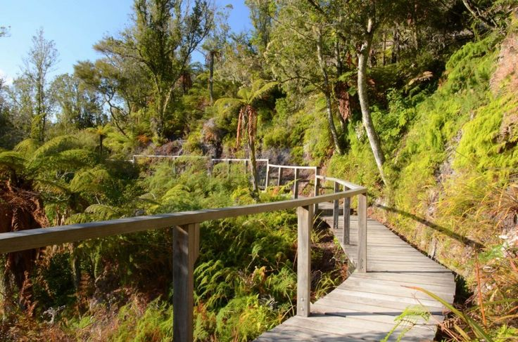 Explore the stunning geothermal attractions and native NZ bush at your leisure at Orakei Korako - The Hidden Valley
