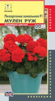 Пеларгония зональная Мулен Руж F1 3 штуки красные (Плазменные семена)
