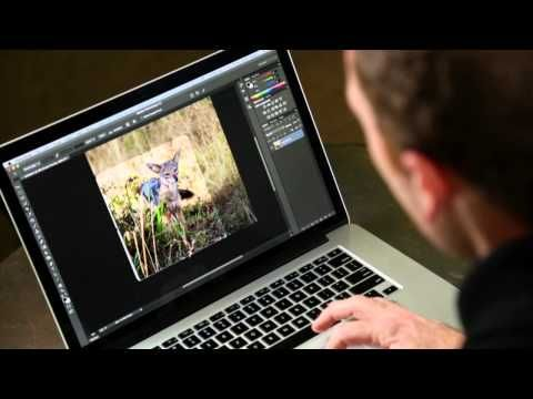 For Creatives: A Collection Of Useful Photoshop How-To Tutorials - DesignTAXI.com