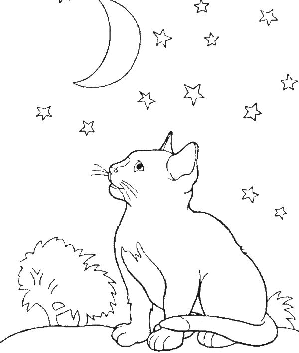 Kitten s first full moon coloring pages coloring pages for Full moon coloring pages