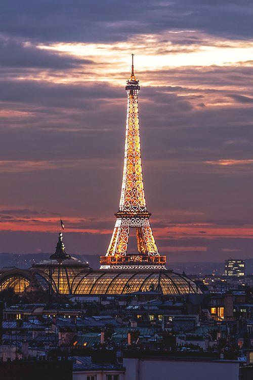 La Tour et les toits de Paris