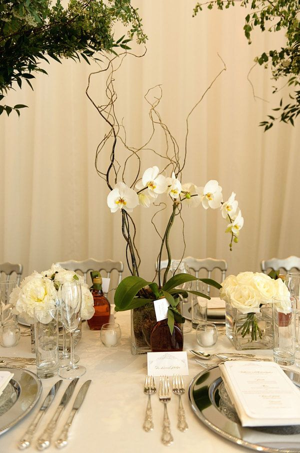 25 Best Ideas About Potted Orchid Centerpiece On Pinterest