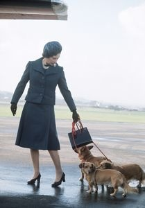 The Queen is pictured at Aberdeen Airport, on her way to Balmoral for a few days' holiday, accompanied by several of her dogs.June 1974: Queen Elizabeth, Corgis, Queens, Royal Family, The Queen, Elizabeth Ii, Dog, British Royal