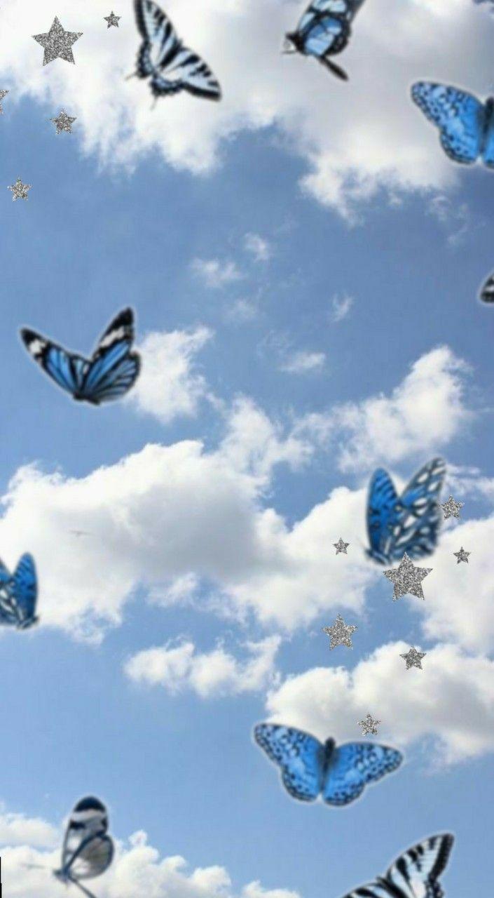 37+ Blue butterfly wallpaper aesthetic Wallpaper