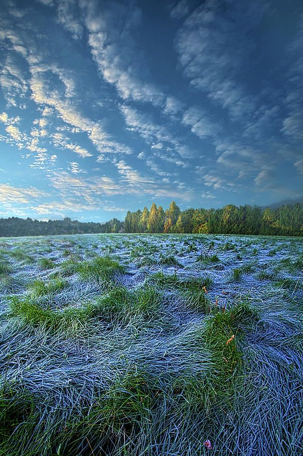 Quiet Grace In 2020 Landscape Landscape Photography Scenery