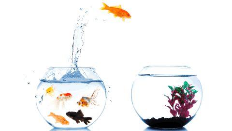 Es tu momento #emprendedores