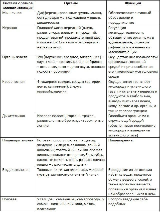 Решебник онлайн биология 8 класс с.в вовк