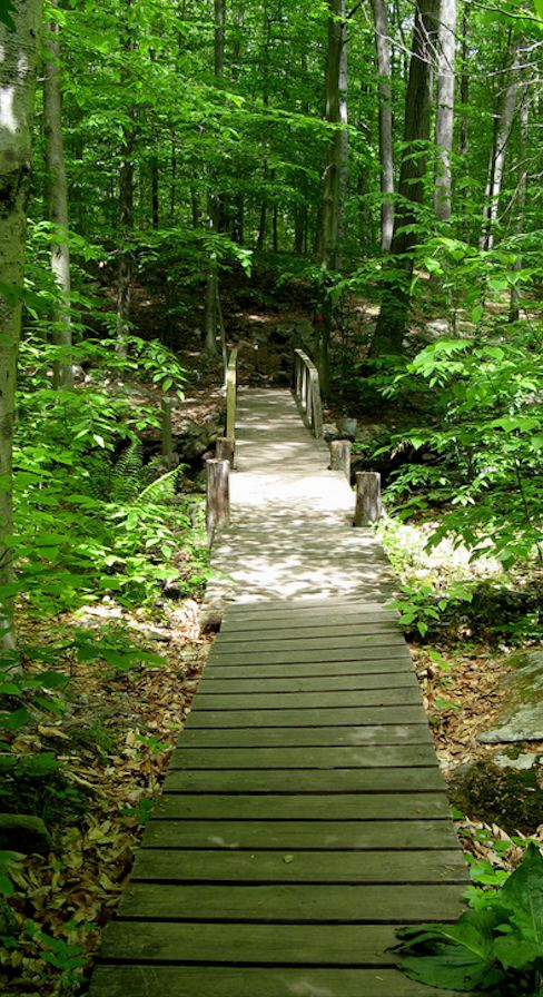 Bartlett Arboretum walking path in Stamford, Connecticut • photo: Susan on Flickr