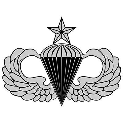 Senior Jump Wings | Airborne | Airborne army, Airborne ...