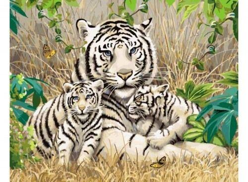 Картина по номерам «Белые тигры»