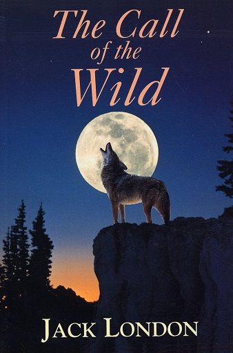 a review of jack londons the call of the wild In jack london's novel the call of the wild, the main character, buck, has developed from a house dog to a sled dog buck, being forced to adapt in order to survive.