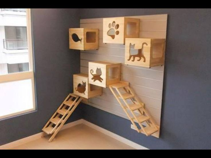 Play area for cats... How cool!!!