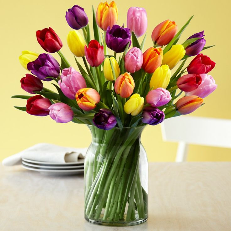 Send elegant #TulipFlower gift for any occasion with maximum savings & get delivery at your door within 24 hours.
