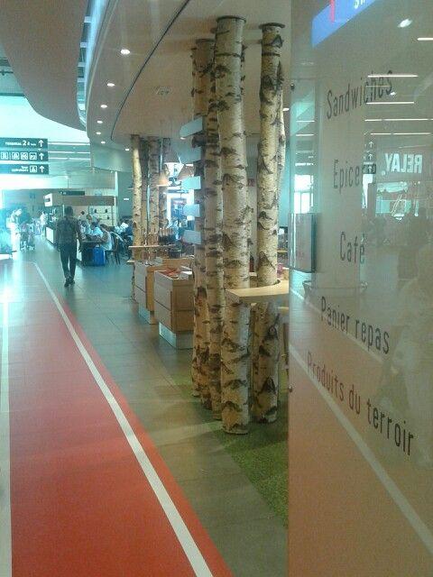 Troncos naturales como columnas decotativas
