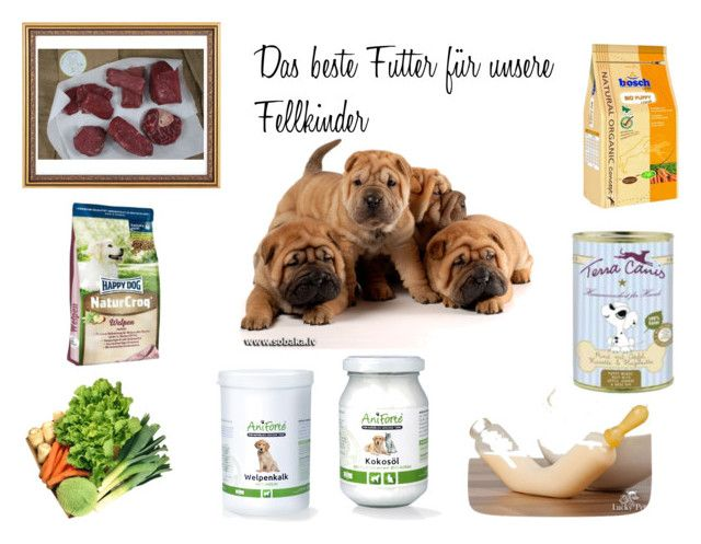"""""""Hundefutter für Welpen"""" by chrisamar ❤ liked on Polyvore featuring interior, interiors, interior design, home, home decor, interior decorating, Bosch and welpenfutter"""