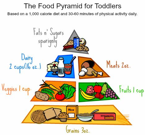 Mother Bear: A Food Pyramid for toddlers (approx. 2-3) and a diet breakdown for children (approx. 4-8) http://bearyhelpful.blogspot.com/