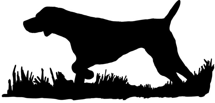 German Shorthair Pointer Silhouette, Bird Dog Upland ...