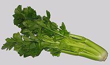 Celery - Wikipedia, the free encyclopedia