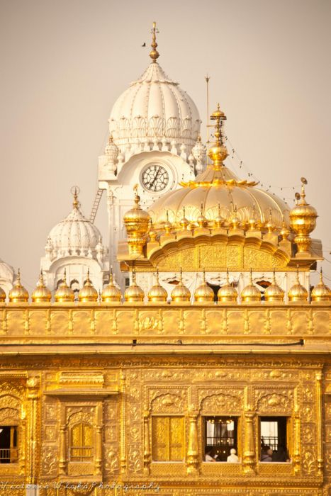 Glorious gold in architecture !!