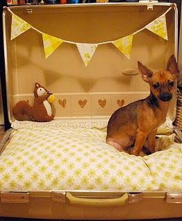 Cute!: Dogs Beds, Suitcases Beds, Small Dogs, Fabrics Scrap, Pet Beds, Doggies Beds, Summer Salad, Dog Beds, Dogs Suitcases