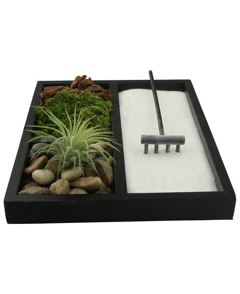 Meditation Zen Garden Terrarium with Natural Elements