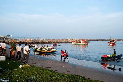 Morning Activity, Sri Lanka