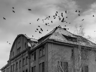 Author Katie M. John & Kate John: Ghost Hunt... Dare you visit the old asylum in Rav...