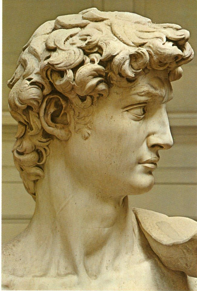 michelangelos david When michelangelo was in his late twenties, he sculpted the 17-foot tall david this colossus seemed to his contemporaries to rival or even surpass ancient greek and roman sculpture.