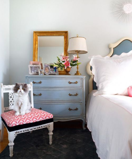 pretty room...that cat though! <3