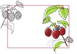 Einkochen: Etiketten für Marmelade zum Ausdrucken - BRIGITTE