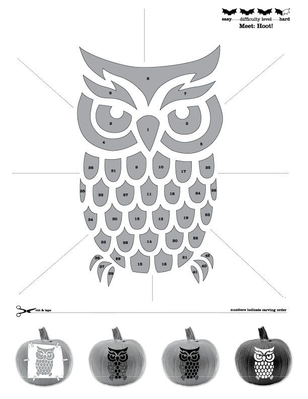 Owl Pumpkin Stencil from Sweet Creations.   PNT003.jpg 612×792 pixels
