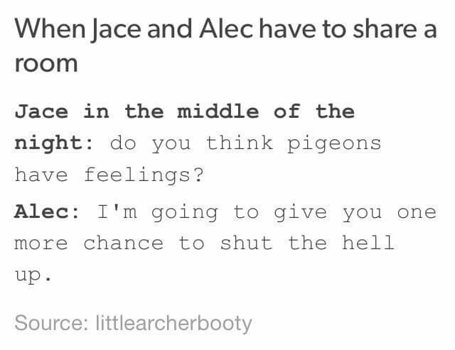 Jace Herondale // Alec Alexander Lightwood // The Mortal Instruments Humor