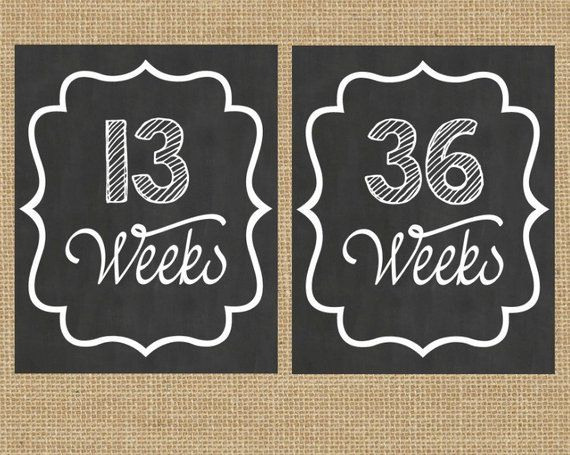 Weekly Pregnancy Chart, Prop Maternity Photo, Baby Hump Sign, Pregnancy Wee …   – Products