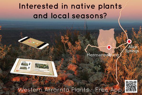 Western Arrarnta Plant App
