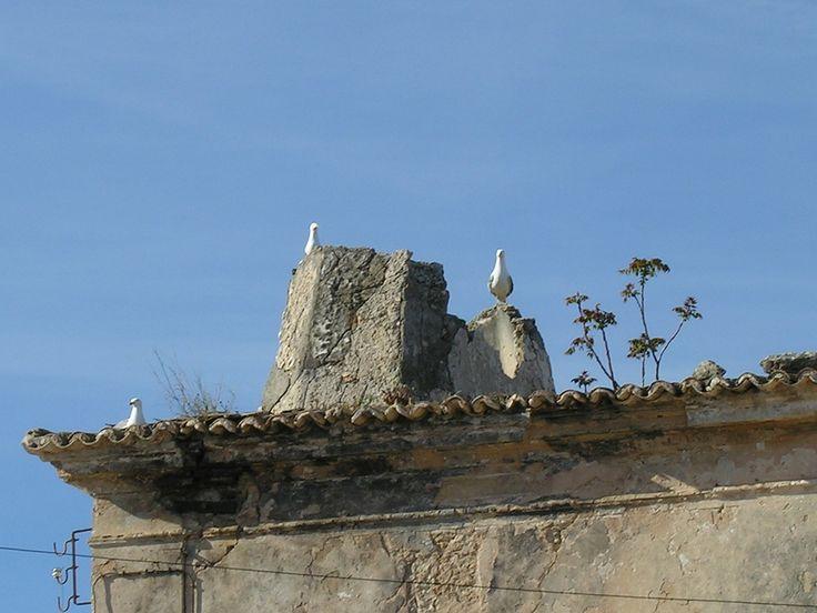 Chaminé - ausgeraucht!!! - Albufeira - Algarve