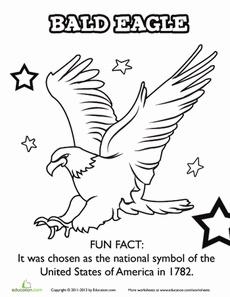46 best Bald Eagle class activities images on Pinterest