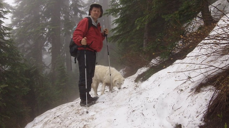 Hiking on the Pacific Crest Trail near Lost Lake, Oregon, with the family dog, a kuvasz.