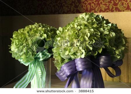 Rache, green hydrangea bouquet for us maids?